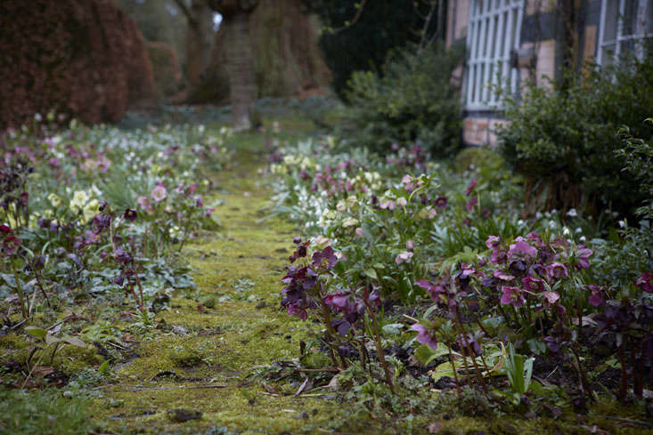 Trending on Gardenista: Bringing the Outdoors In