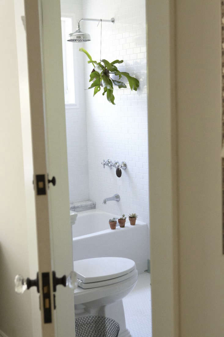 5 favorites houseplants for the bath gardenista for Teen bathroom pictures