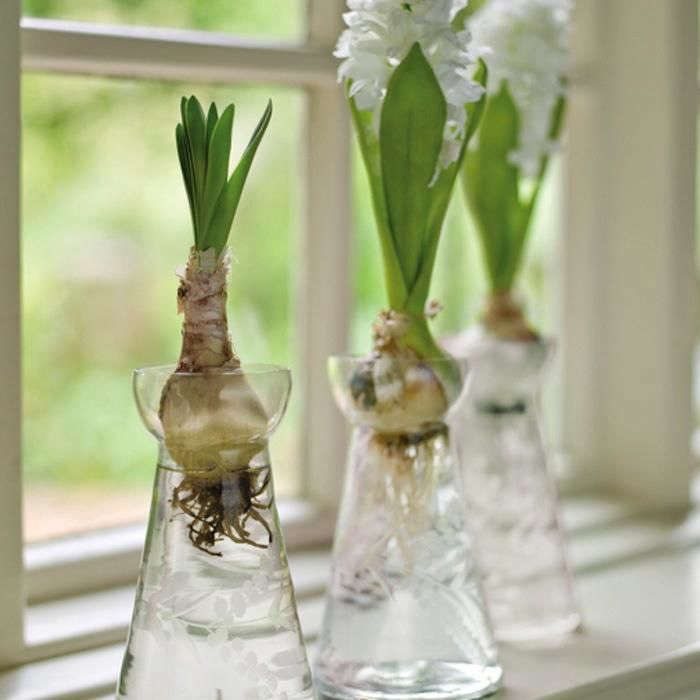 10 Easy Pieces Bulb Vases Gardenista