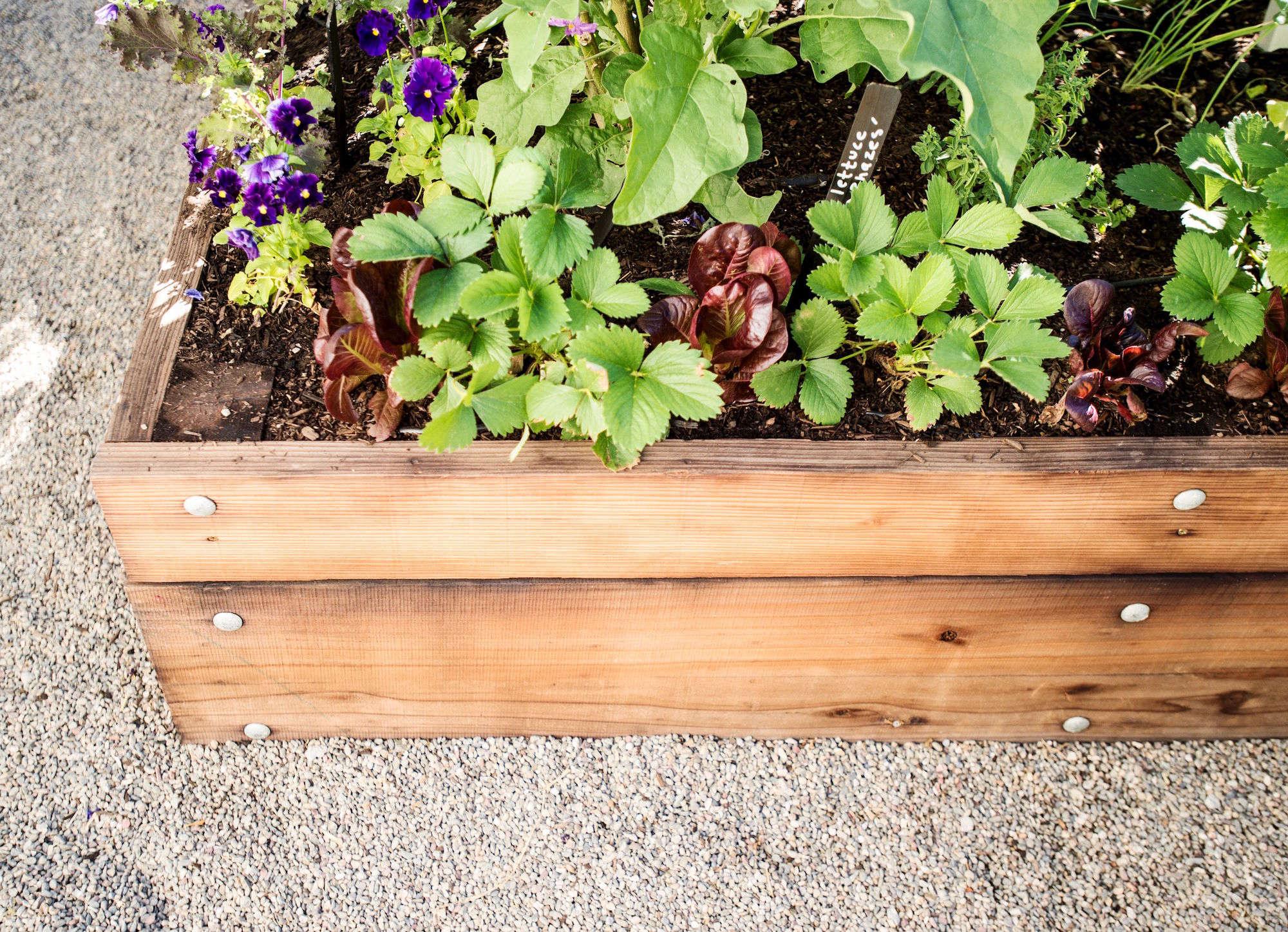 Edible gardens on gardenista for Garden design 101