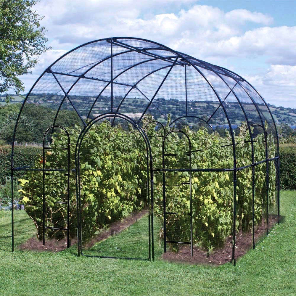 Hardscaping 101 fruit cages gardenista for Garden cage