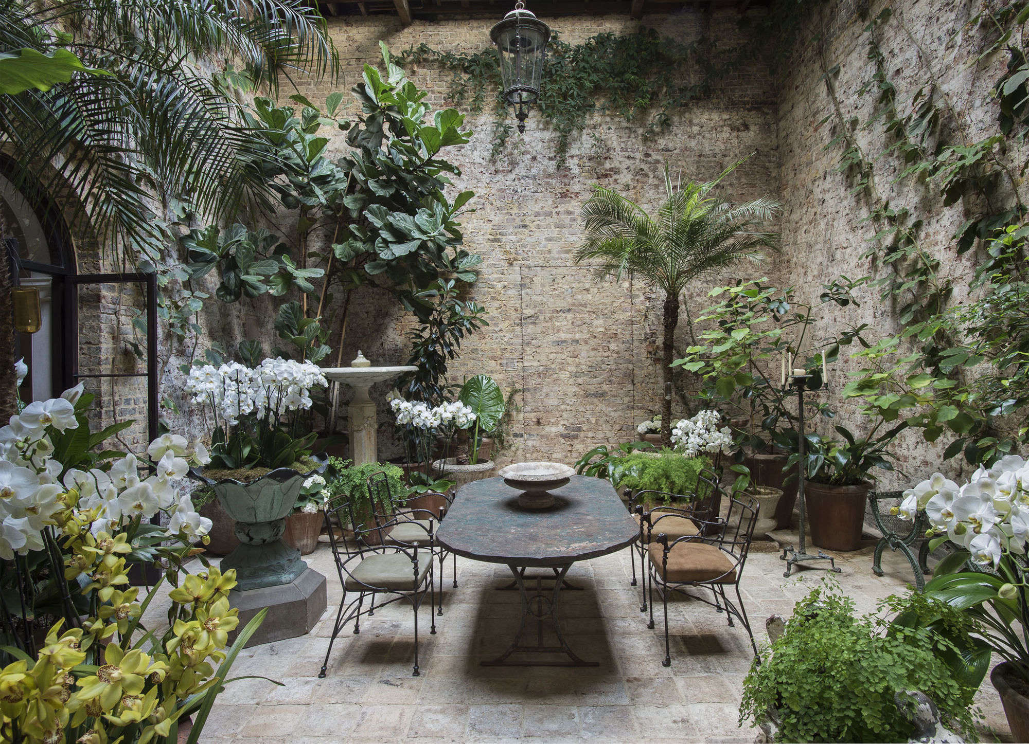Among the orchids designer rose uniacke at home in london for Garden design amazon