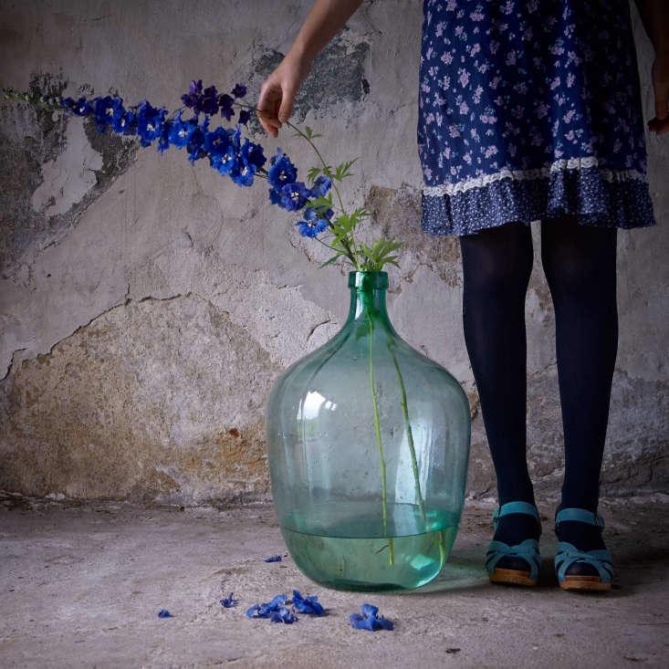 One Bouquet a Day Delphinium