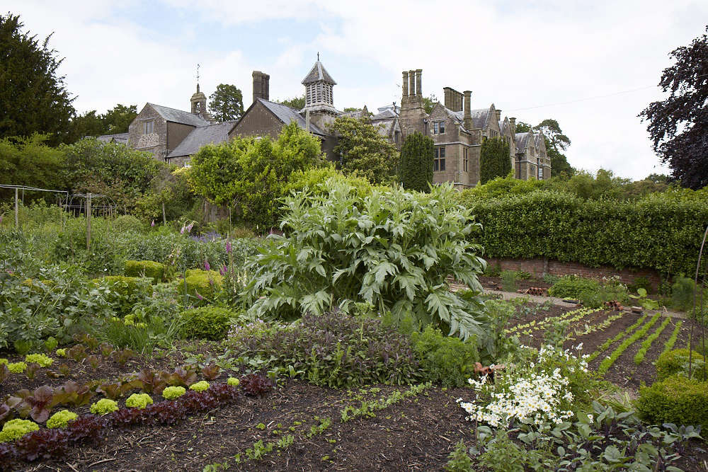 Old-Lands: A Modern Welsh Garden, from a Bygone Age