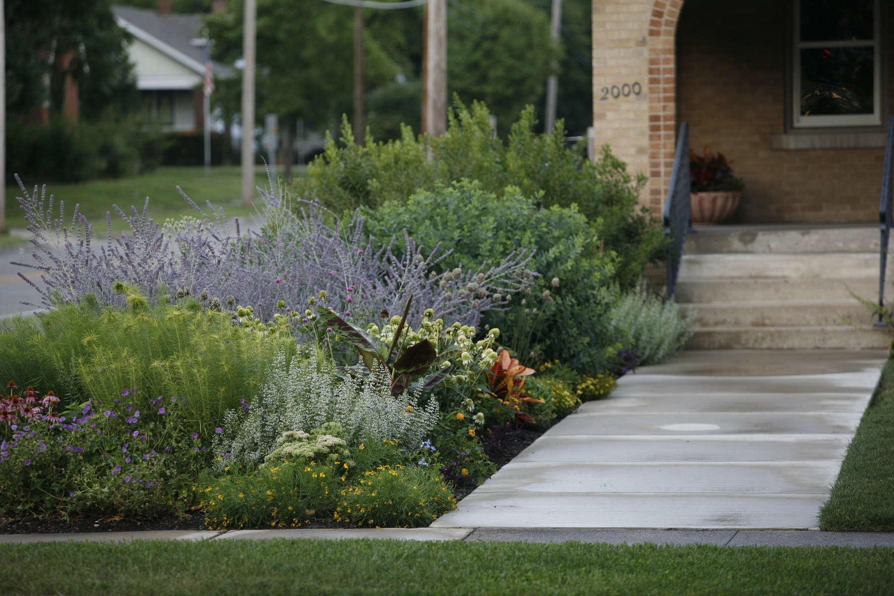 12 Ideas to Steal from Prairie-Style Gardens - Gardenista