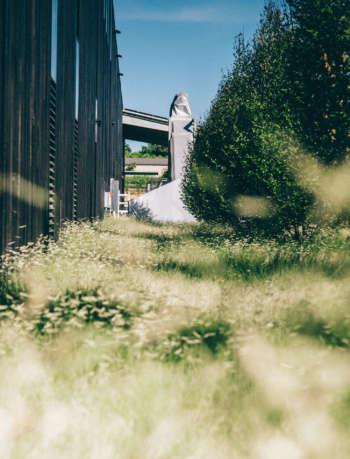 MFLA Munden Fry Landscape Associates portrait 3_81