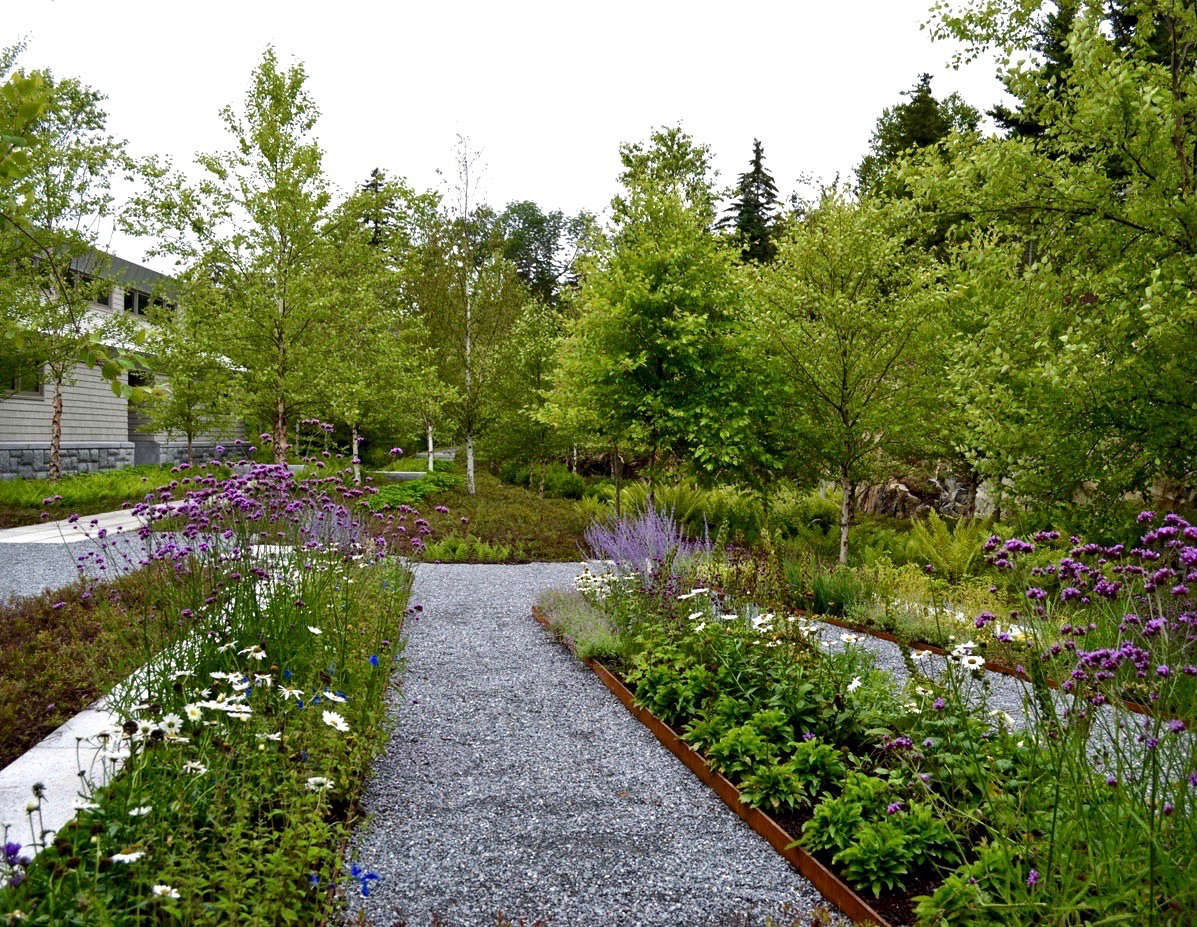 Lessons From The Land Finding A Lost Landscape On The Coast Of Maine Gardenista