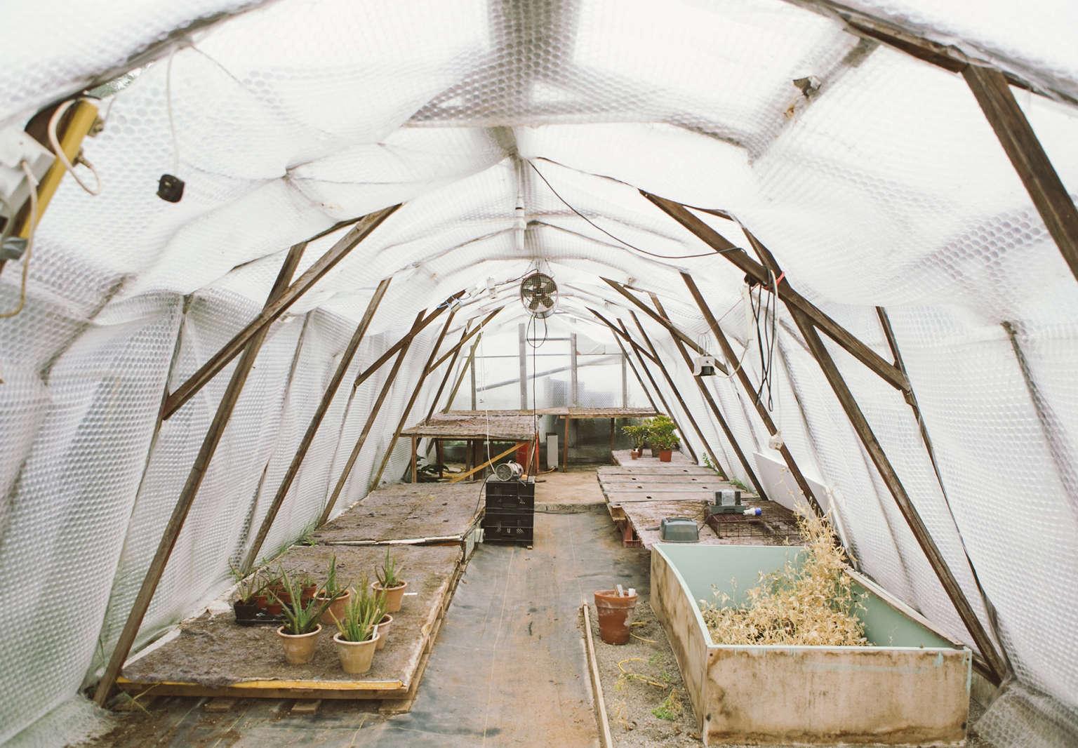 garden hack hoop house vervain growhouse india hurst gardenista