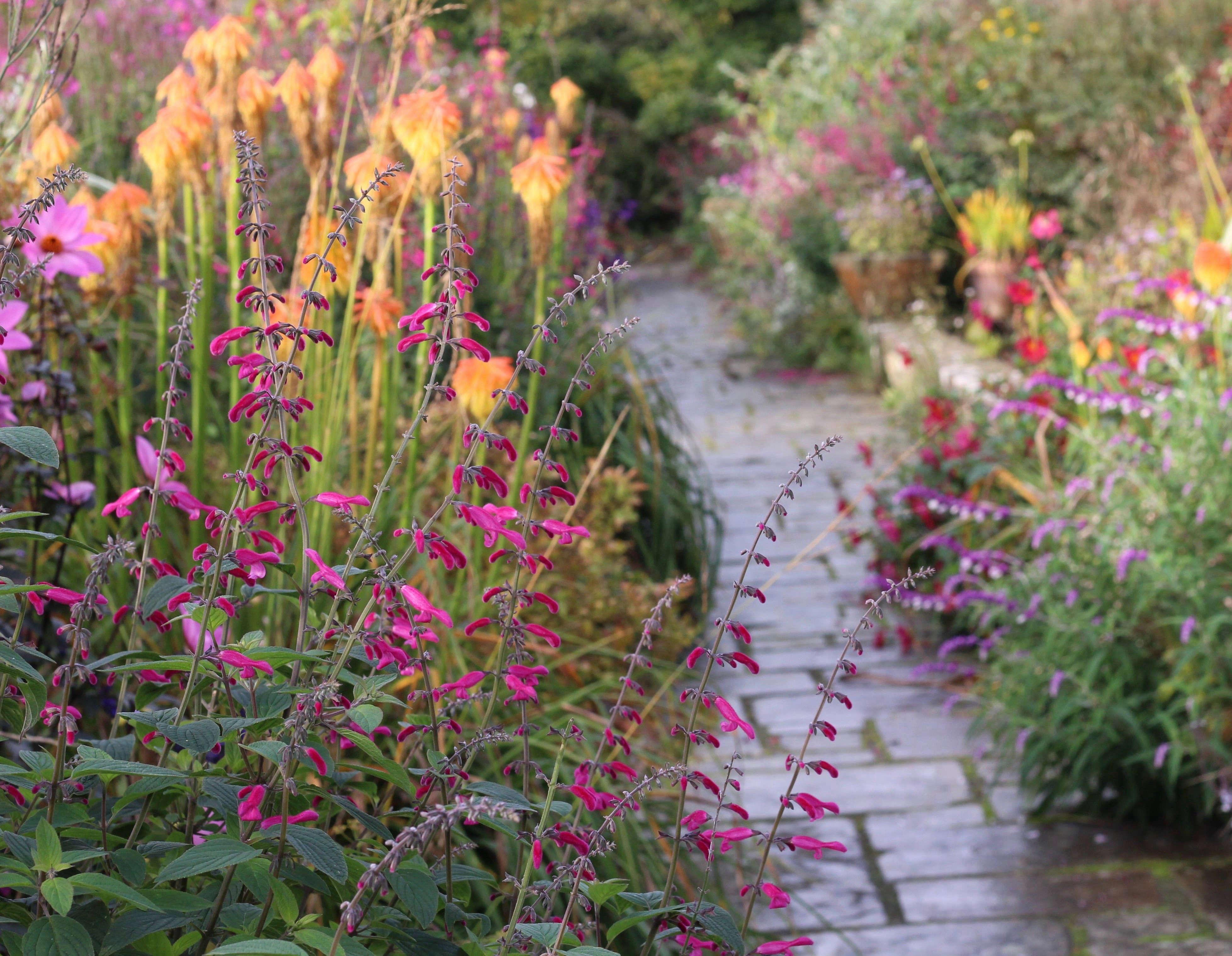Superieur Gardenista
