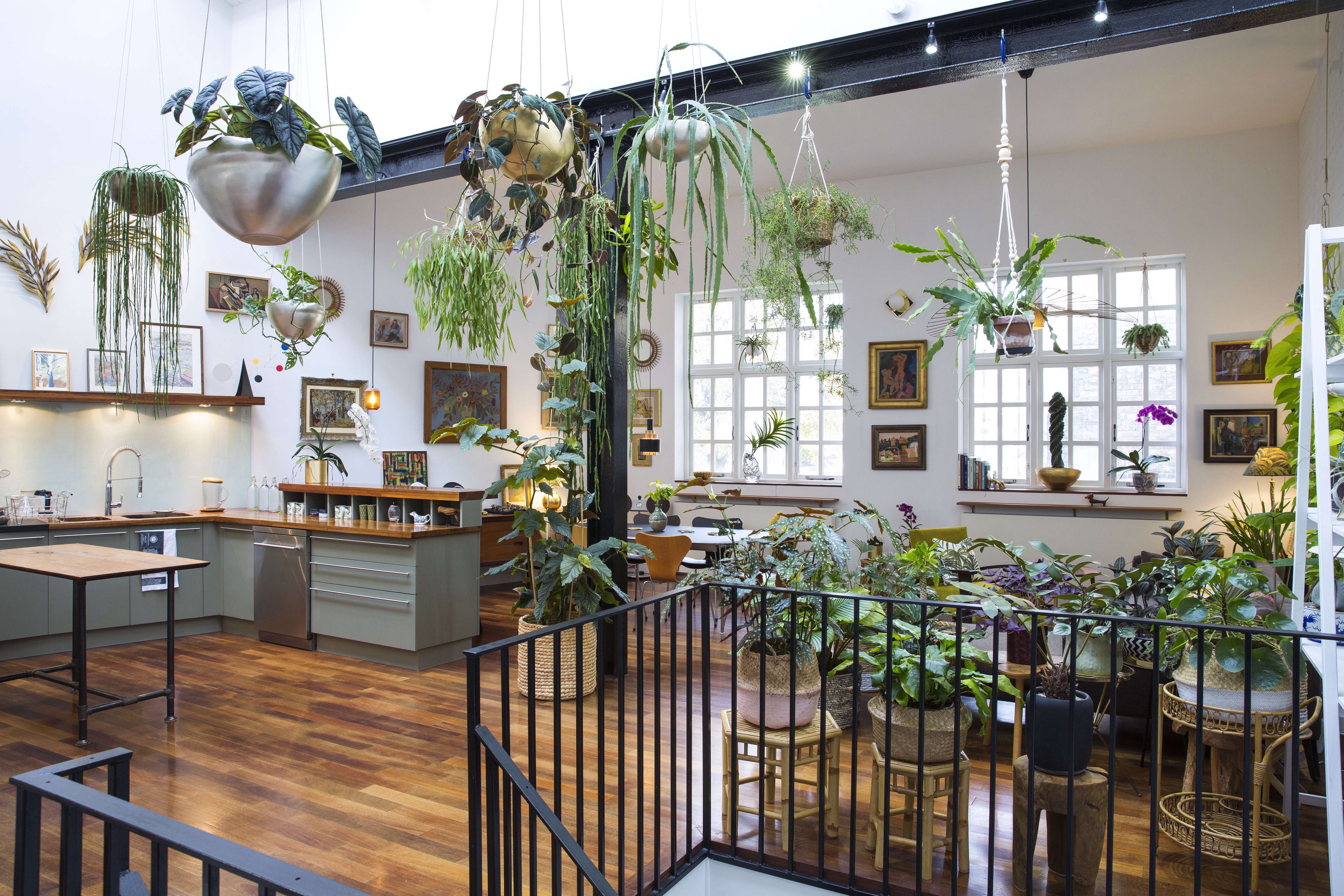 Jamies Jungle At Home With Houseplants In London