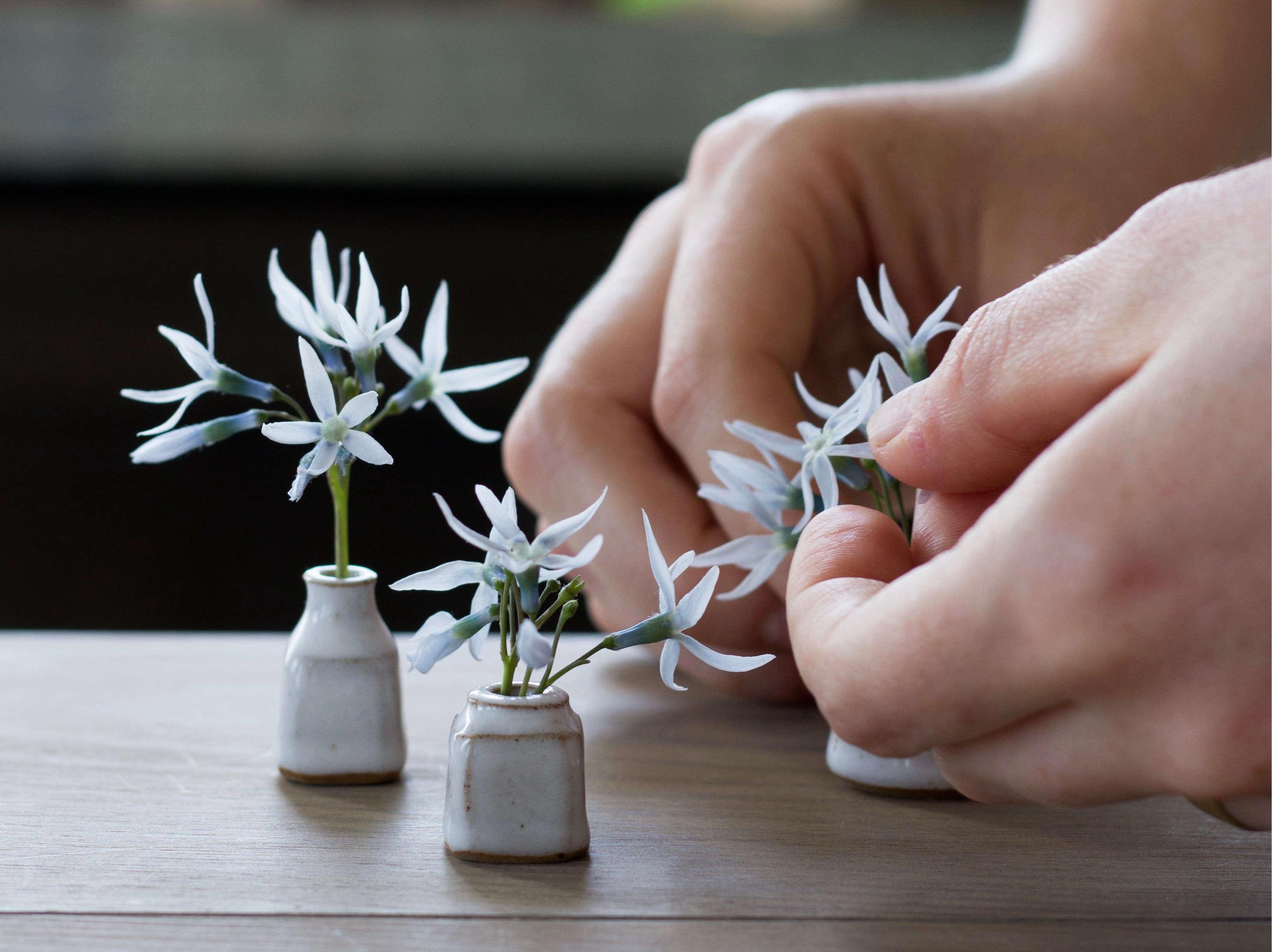Tiny Bouquets 8 Ideas For Floral Arrangements In Miniature Vases Gardenista