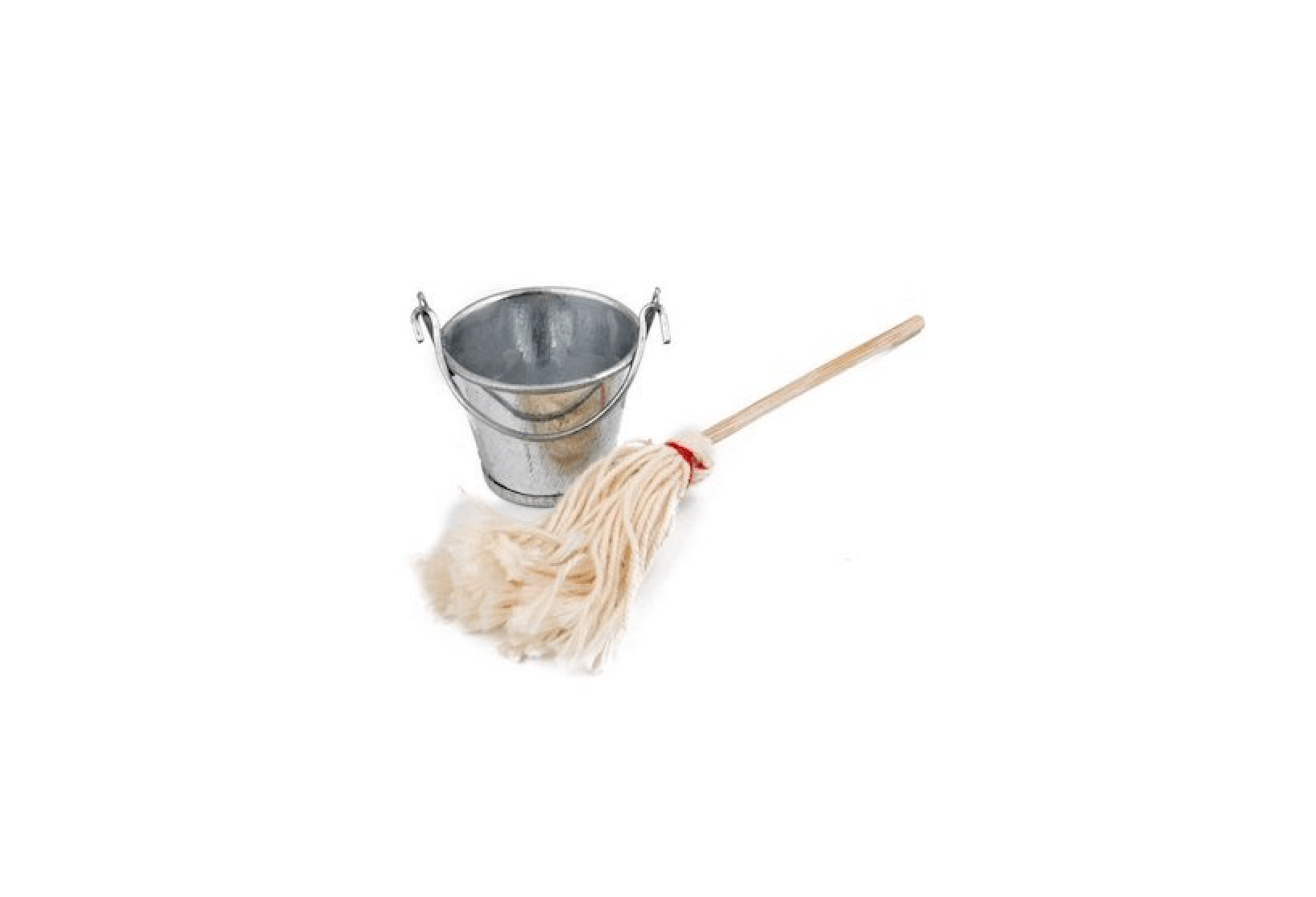 Cleaning Set Mop And Bucket