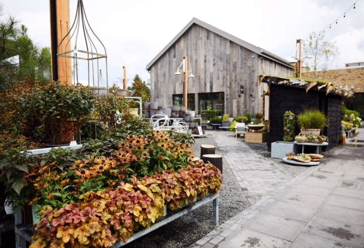 An autumn palette at Terrain&#8\2\17;s new outpost in Devon, PA. Photograph courtesy of Terrain, from Philadelphia Story: Terrain&#8\2\17;s New Shop on the Main Line.