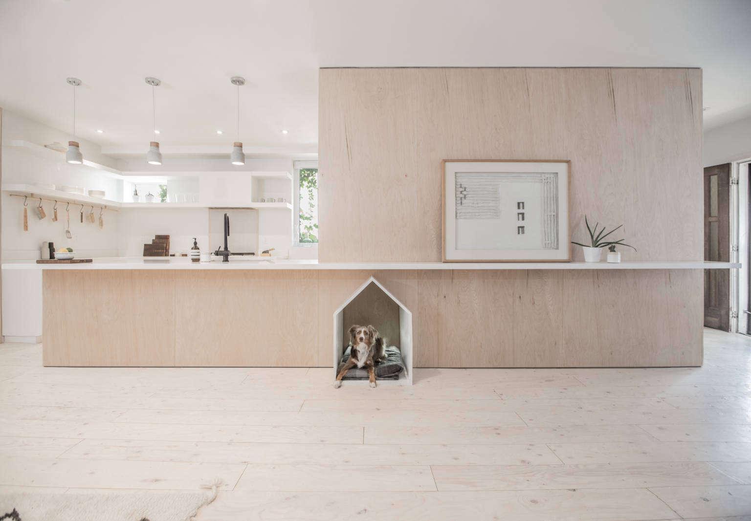 studio ac sheridan kitchen with dog house toronto 1