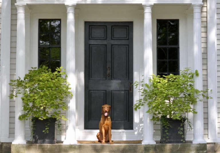 inn kenmore hall exterior dog crop1