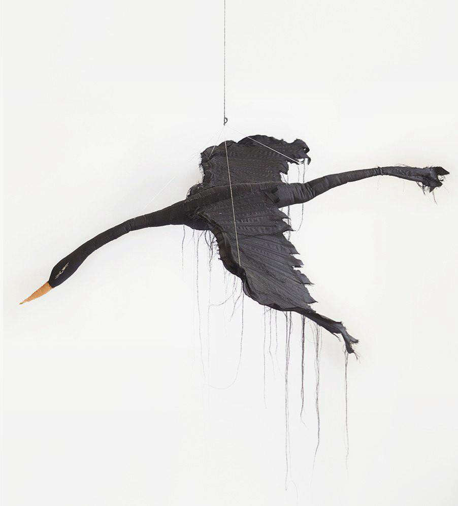 tamar mogendorff flying black bird