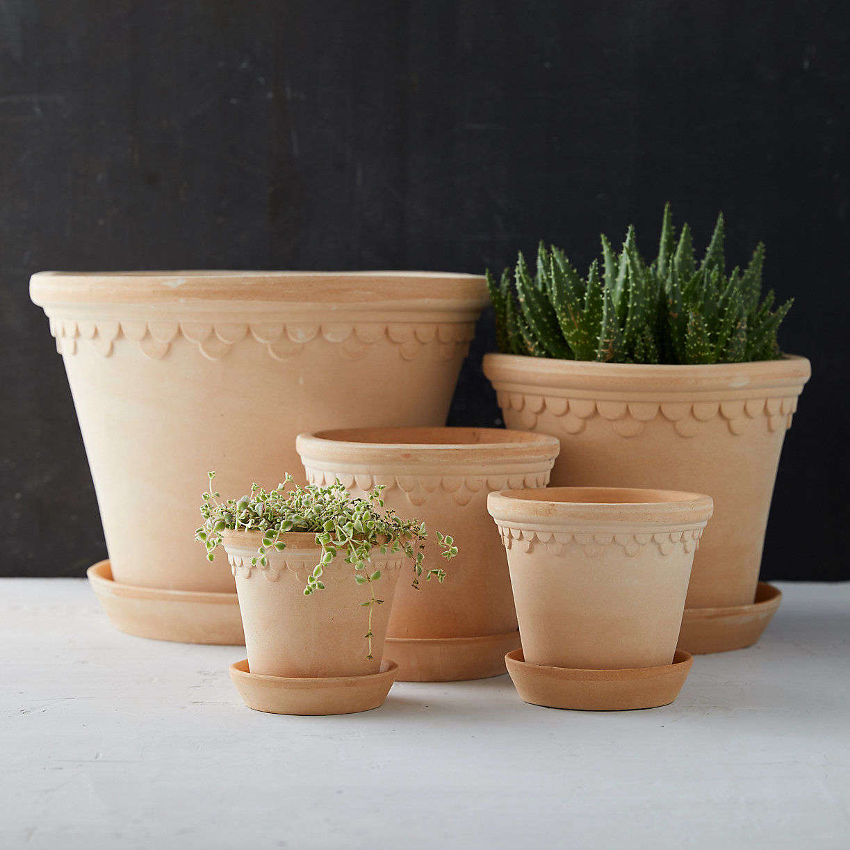 10 Easy Pieces Terracotta Pots And Planters Gardenista