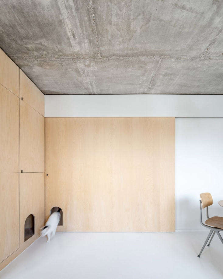 Sacha Apartment by Sabo Project in Paris, Cat Doors