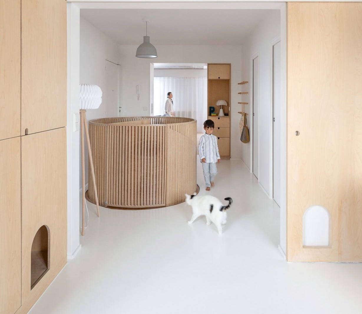sacha apartment sabo project paris hall crop