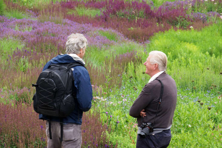 You're Invited: A Virtual Screening of 'Five Seasons: The Gardens of Piet Oudolf'
