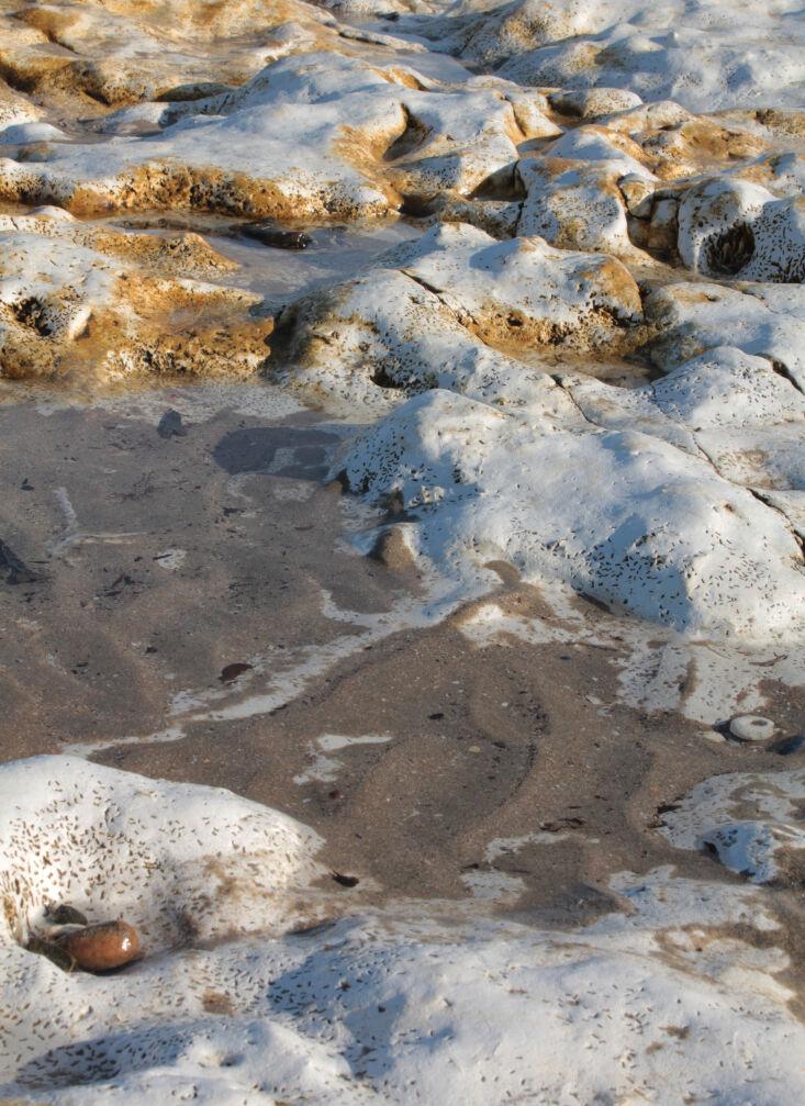 kindred house sea rocks