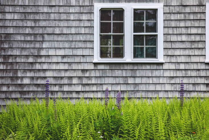Required Reading A Glimpse Inside The Maine House This weathered, shingled Maine home has been in Jim Terry&#8\2\17;s family since \19\17, when his grandparents built it. Preserving it has become a family affair, with the clan hand dipping grey shingles for the siding and even rallying to (somehow) shore up the foundation by hand. Family, too, often fills the house, with overflow guests camping on a nearby island.