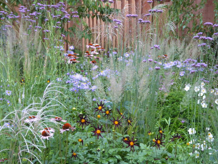 While many designers have opted for warmer autumnal schemes, Robert Myers illustrates perfectly how to combine pastel shades with richer tones in his Florence Nightingale garden. Here, billowing Verbena bonariensis as well as two grasses—Miscanthus sinensis 'Silberspinne'and Calamagrostis brachytricha—create a gorgeous haze around the deep burgundy dahlia 'Verrone's Obsidian', Aster 'October Skies', and echinacea.