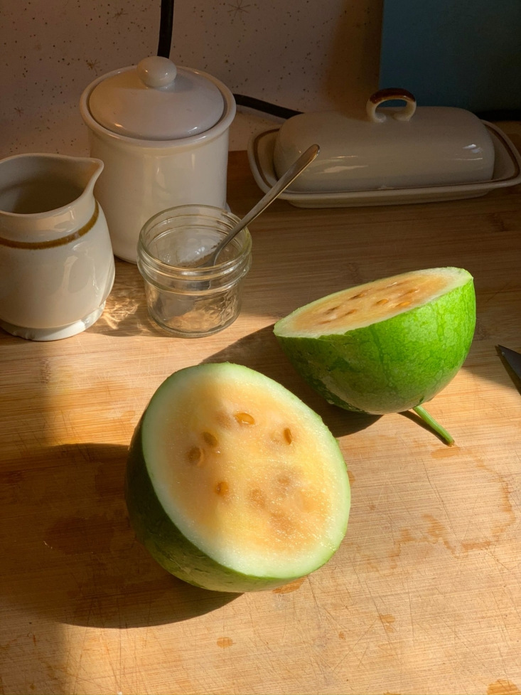 My greatest triumph: delicious Siberian watermelon from the garden.