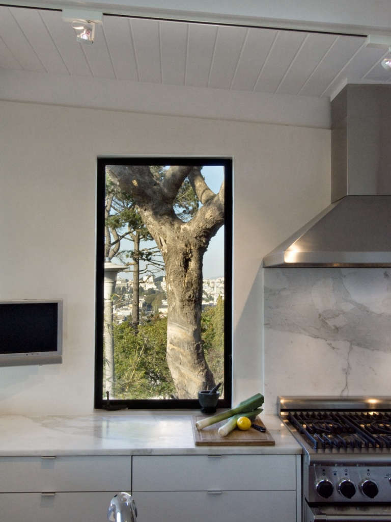 dolores heights kitchen 14