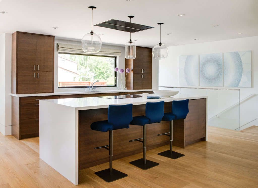 dark cabinetry paired with the brightest whites 9
