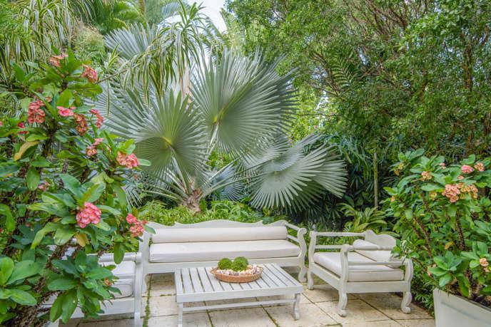 craig reynolds la  caribbean garden 1